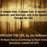 THROUGH THE VEIL ~ Sassy Sunday Spotlight ~ Hero #Interview with #author Jan Selbourne @JanSelbourne #MysticDesire @bvsbooks
