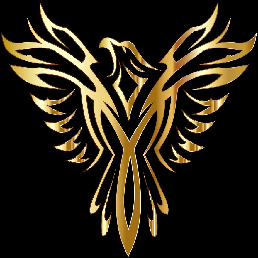 Operation #Phoenix