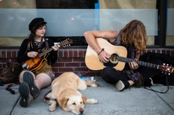 music affects dogs