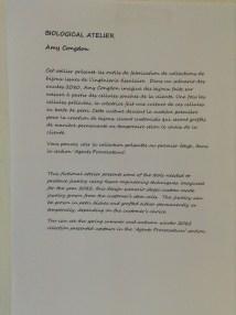 Exposition Alive-Fondation EDF-Paris_2013-19