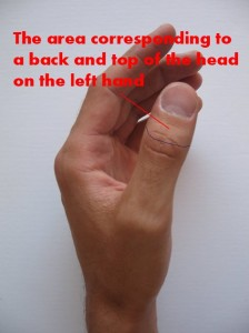 the-area-corresponding-to-a-top-and-back-of-the-head-on-the-left-hand