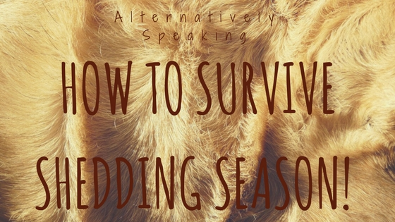 How to Survive Shedding Season!