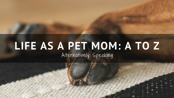 Life as a Pet Mom: A to Z