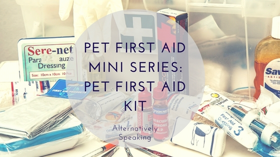 Pet First Aid Mini Series: Pet First Aid Kit
