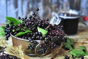 are elderberries superfoods