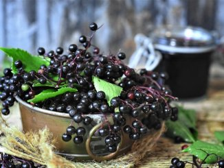 are elderberries superfoods