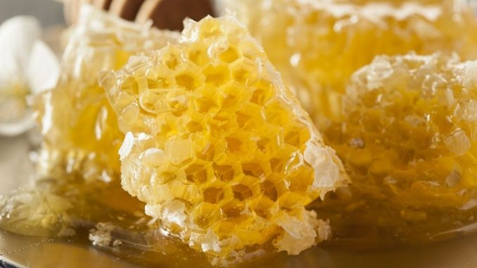 Products made by Honeybees