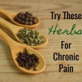 Herbs For Chronic Pain