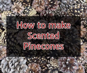 How to Make Scented Pinecones