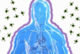 5 aliments pour booster votre système immunitaire