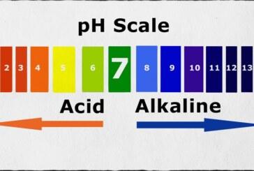 Voici 2 fruits primordiales pour l'équilbre de votre pH !