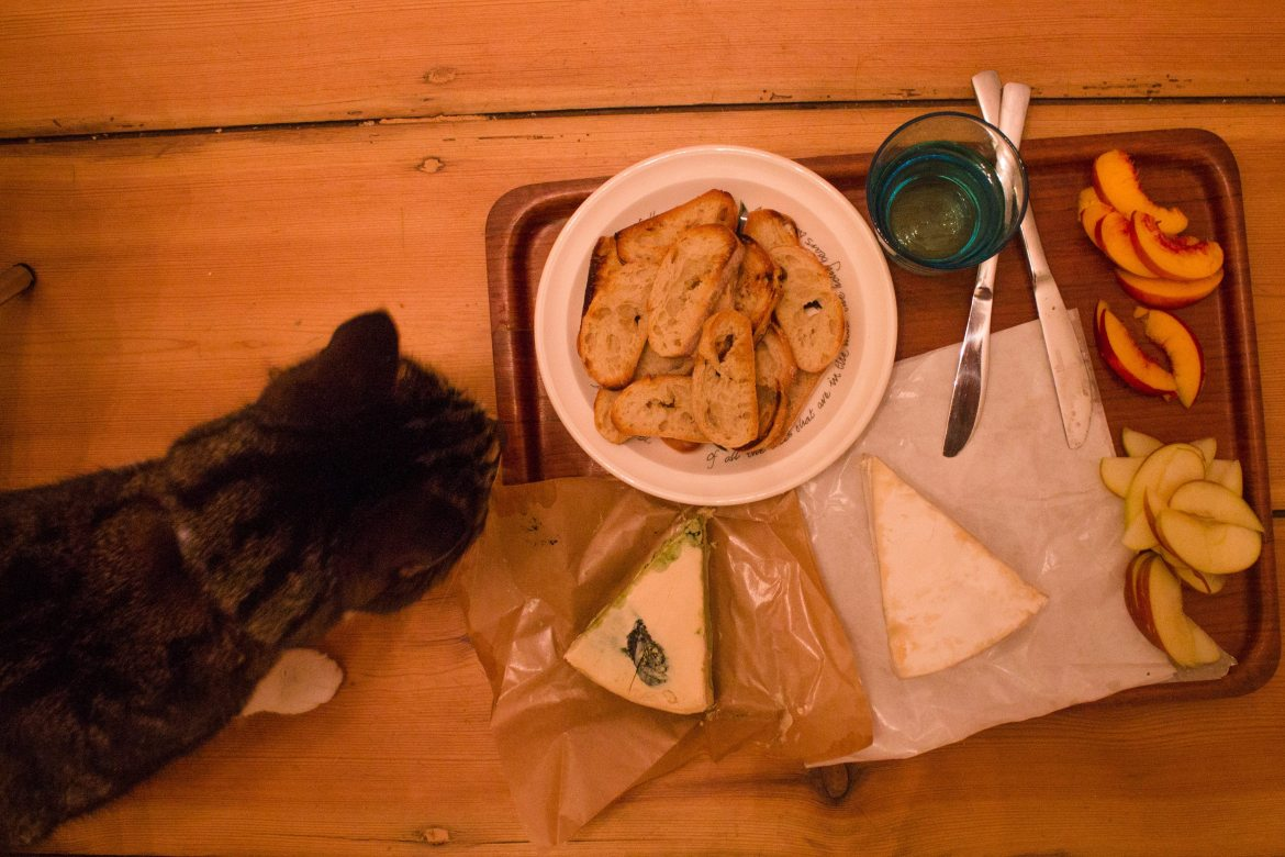Cat and Vegan Cheese Plate