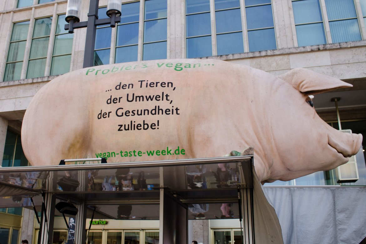 Berlin Vegan Summer Festival Entrance