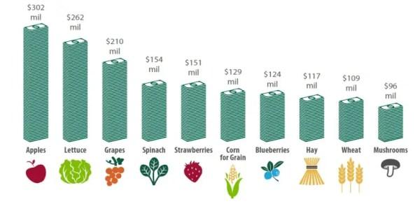 top-crops-no-text