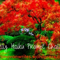 "Haiku - ""Gold"" & ""Crane"""