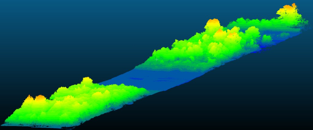 Point cloud of a forest scanned by airborne LiDAR on drone