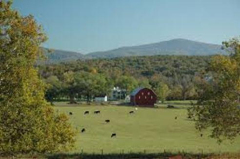 rockingham-county-farm