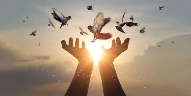 """eForum #14: """"Wo finde ich Gott – meine Spiritualität im Alltag; meine Beziehung zu Gott"""""""