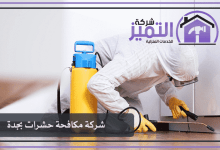 Photo of شركة مكافحة حشرات بجدة