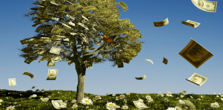 Money grows on trees_spending