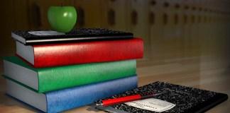teacher school education