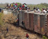 Will Ainsworth: Illegal immigration is an epidemic that demands a cure