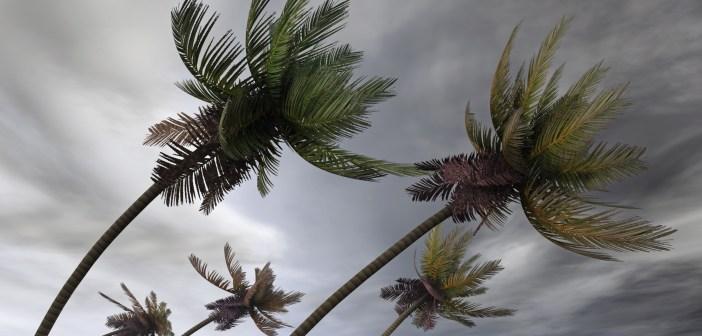 hurricane-winds