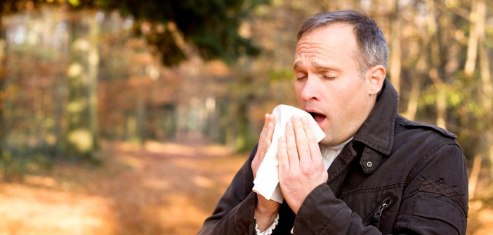 allergy man fall