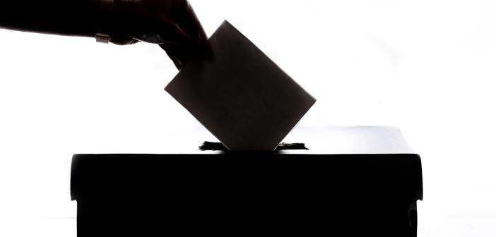 election_ballot-black-and-white-black-and-white-1550337