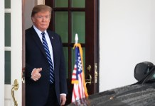 Donald Trump, Sebastian Kurz