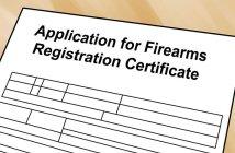 gun license