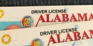 Alabama drivers license