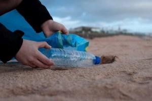 clean up litter