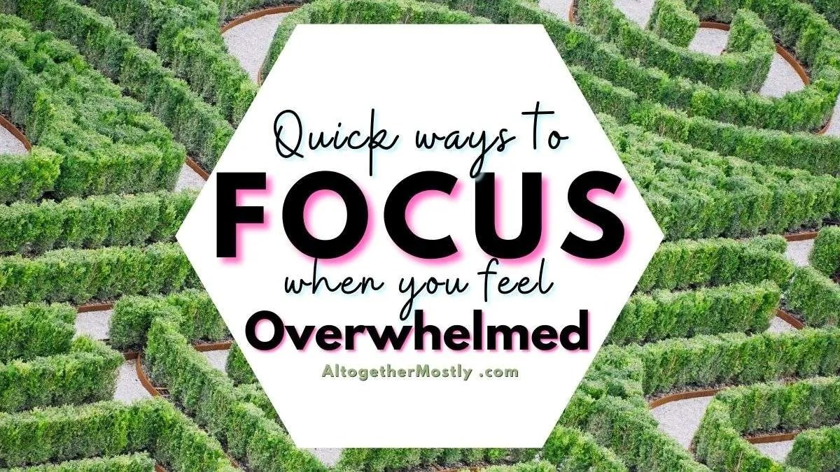 steps for to focus when you feel overwhelmed green hedge labyrinth maze