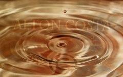 Golden-Drop-IMG_5018-copyright-webv