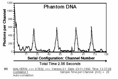 dna_phantom_3