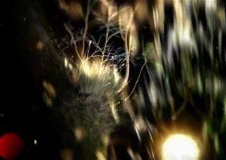 :papercutz – Lylac (Helios Remix)