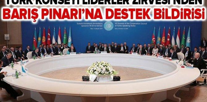 Türk Konseyi Liderler Zirvesi'nden Barış Pınarı Harekatı'na destek bildirisi