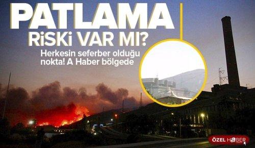 Milas'ta alevler santrale ulaşmadan durduruldu! Tüm tedbirler artırıldı ÖZEL HABER .