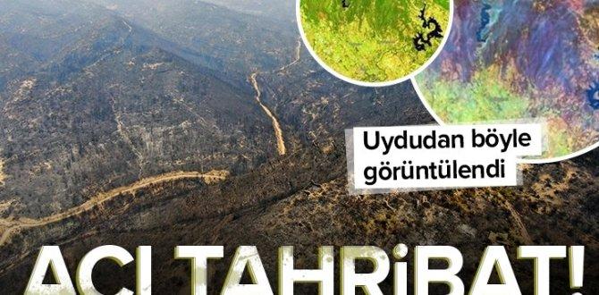 Yürek yakan görüntü! Orman yangınları uydudan böyle görüntülendi.