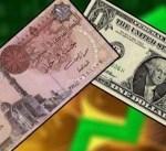 مصر: الإبقاء على سعر الدولار في الجمارك عند 16.5 جنيهاً مدة شهر