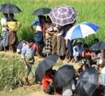 بورما: السلطات تجمع محصول حقول المهجرين الروهينجا