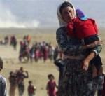 30 ألف كردي نزحوا عن كركوك بعد سيطرت القوات العراقية على المنطقة