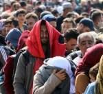 ألمانيا: مفوضية الأمم المتحدة تدعو إلى لم شمل أسر جميع اللاجئين