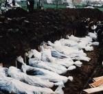 استئناف الحكم ضد كاراديتش المتهم بإبادة مسلمي البوسنة