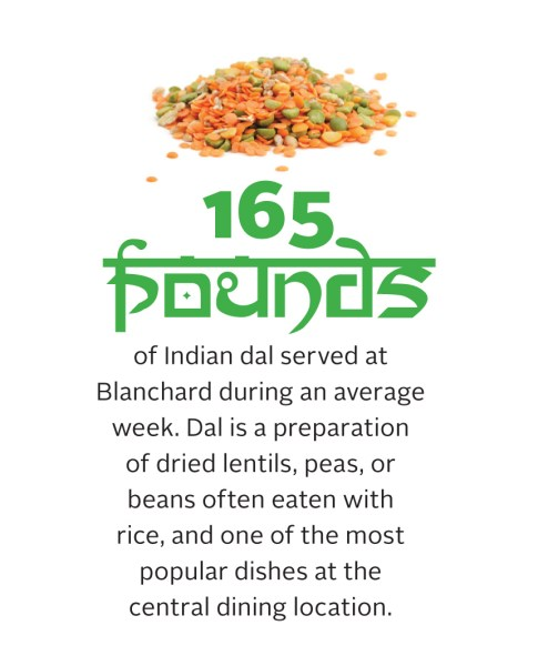 Amount of Dal