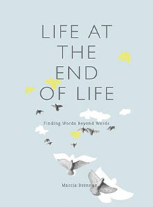 Life at the End of Life book cover