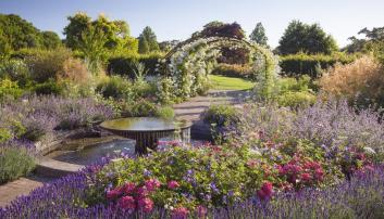 RHS Wisley garden