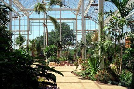 Jardín Wislwy de RHS. Interior del invernadero