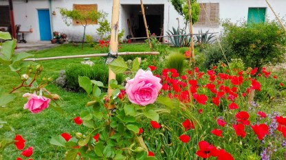 El jardin de la charca 13